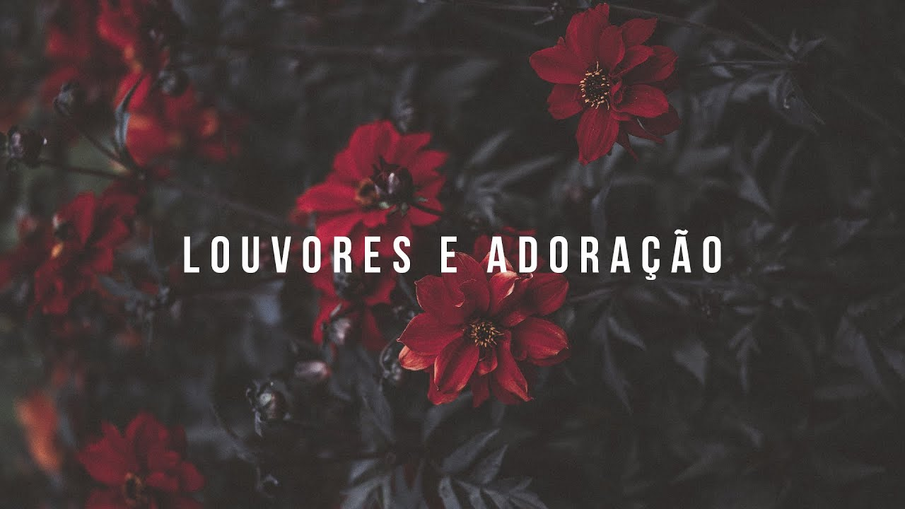 MUSICA DE BARROS A BAIXAR ATITUDE GRATIS ALINE