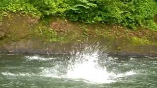 白馬アドベンチャークラブ 水遊び 2010.7.17
