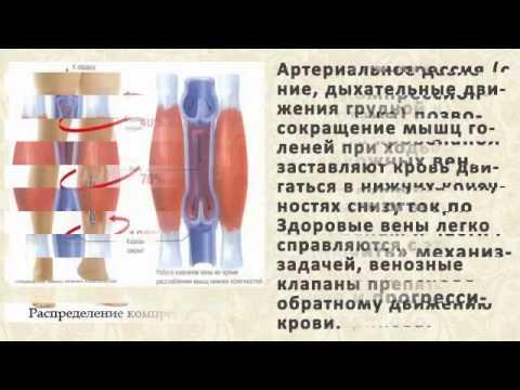 Бартолинит: симптомы, лечение, последствия, фото