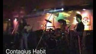 "Contagious Habit ""My Song"""