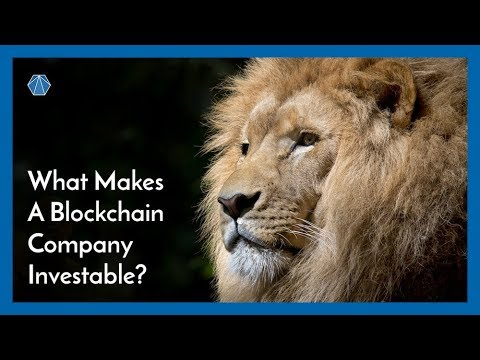 What makes a Blockchain company investable?
