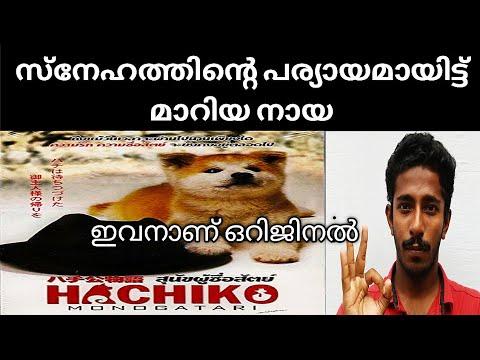 Hachiko Movie Review By Naseem! Malayalam - YouTube