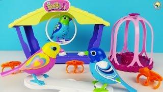 DigiBirds – співають пташки для дітей, огляд інтерактивної іграшки / Singing Birds Toys