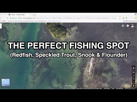 The PERFECT FISHING SPOT (For Redfish, Speckled Trout, & Flounder)