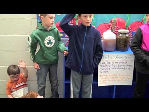 Jonesport Elementary School's PreK - 2nd Graders' Seaweed & Plant Projects
