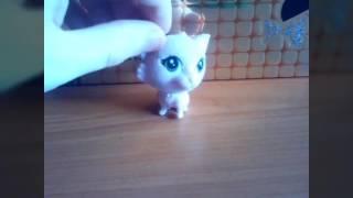 Обзор/Распаковка 3 серия котята