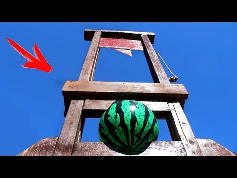 EXPERIMENT: GUILLOTINE VS WATERMELON BALL