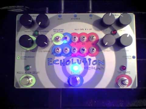 Pigtronix - Echolution -BEST OF-