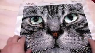 итоги апреля/кот Базальт вышивка бисером/просьба о помощи