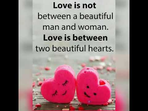 25 Love Quotes Which Tell You How Beautiful Love Is.