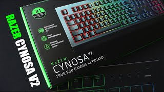 Razer Ornata V2 & Cynosa V2 Unboxing | NO COPYRIGHT TECH