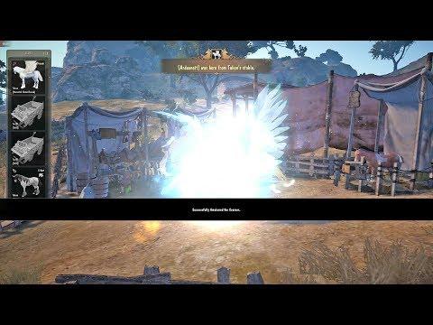 Easy T9 Pegasus Awakening Attempt Black Desert Online