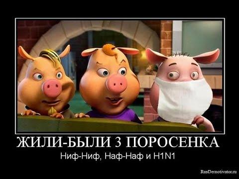 про свиней часть 1 с юмором и позитивом.весёлые картинки и карикатуры