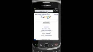 TodoBravo : BlackBerry installation (Français)