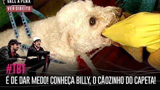 É DE DAR MEDO! CONHEÇA BILLY, O CÃOZINHO DO CAPETA! | #TBT