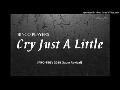 Bingo Players-cry just a little(Pro-Tee Rimix)