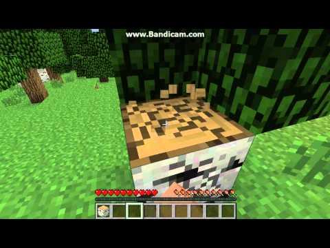 houweel Minecraft Name History - minecraftiplist.com