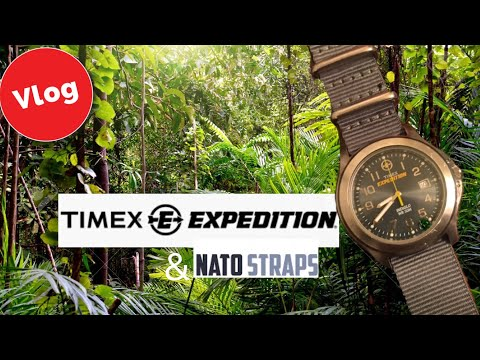 Wrist Watch Vlog Timex Expedition And Nato Straps