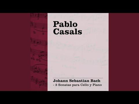 Sonata No. 1 in G, BWV 1027: I. Adagio - Allegro non tanto
