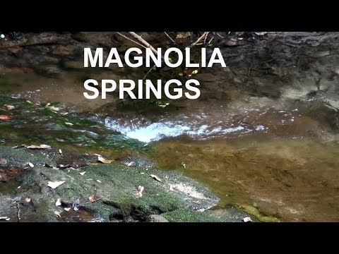 Magnolia Springs, Alabama