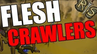 Runescape 2007 ULTIMATE Combat Guide - Flesh Crawlers In-Depth - Money Making plus Combat!