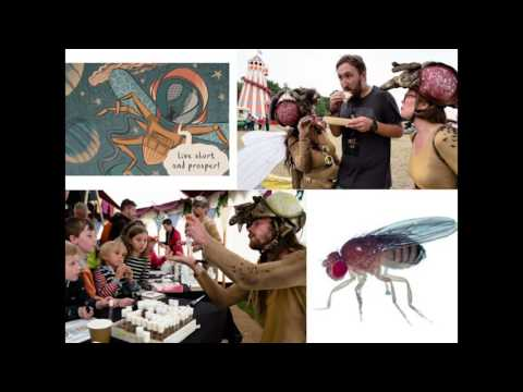 Creative Science Engagement at the Francis Crick Institute and Beyond