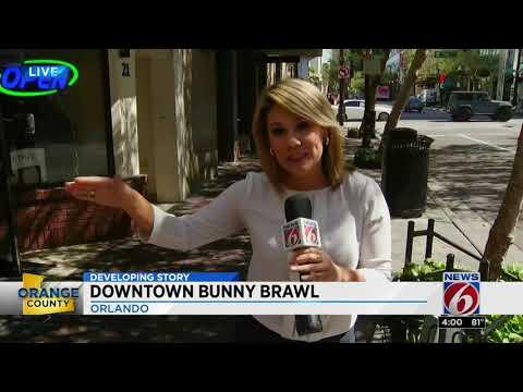 MORNING NEWS - Man In Bunny Brawl Speaks Out!