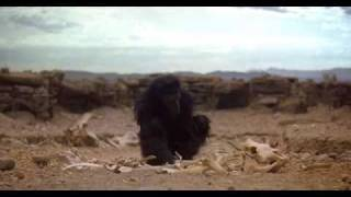 2001: A Space Odyssey - The Dawn Of Man
