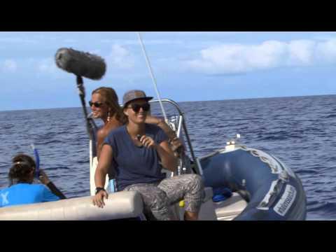 HUMPBACK WHALES  - YOUNG OCEAN EXPLORERS