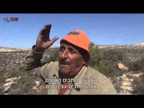 מבט - המשטרה חוקרת חשד לפעולת תג מחיר ב-3 כפרים פלסטיניים בשומרון