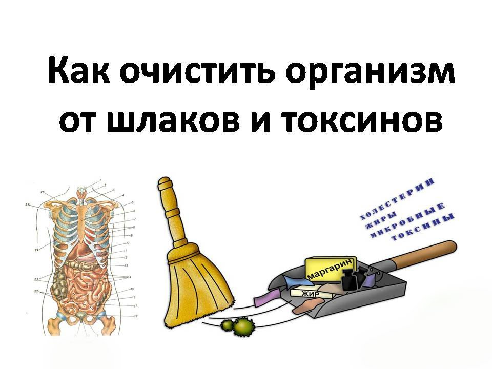 очищение организма шлаков токсинов маслом