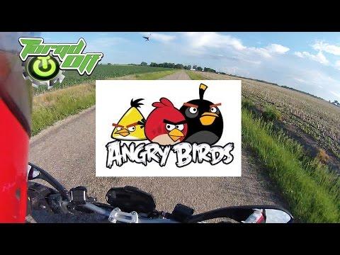 Angry Birds and Karaoke Practice.