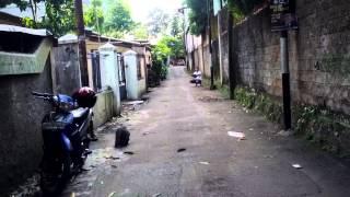 Che DM / Elang Brontok (jhones)