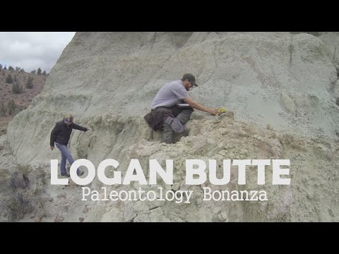 Logan Butte: Paleontology Bonanza