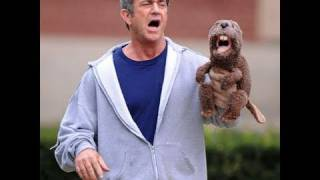 The Beaver Starring Mel Gibson - Movie Review