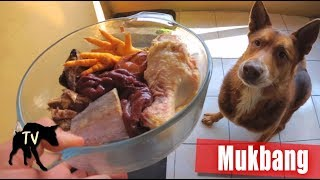 Dog Food Mukbang | Fish, Chicken, Beef, Deer