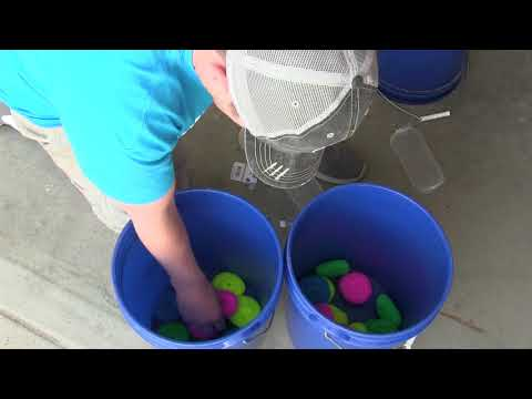 DIY Bait Tank and Filter System!!!