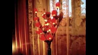 www.Best-Lamps.ru