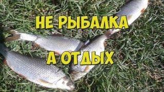 Не рыбалка, а отдых. Ловля плотвы
