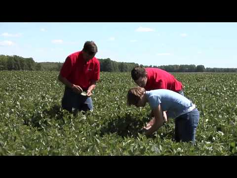 The New MAEAP Law and What It Means for Michigan Farmers