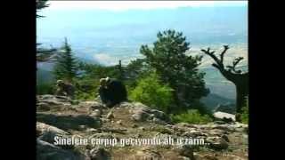 Büyük Çilekeş - Yusuf Ziya ÖZKAN
