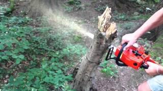 видео Бензопилы Hitachi: бензопила Хитачи cs 40 el