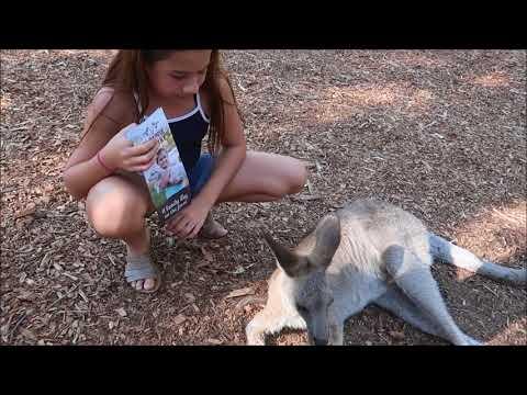 PARADISE COUNTRY - Aussie Farm @ GOLD COAST AUSTRALIA 2018
