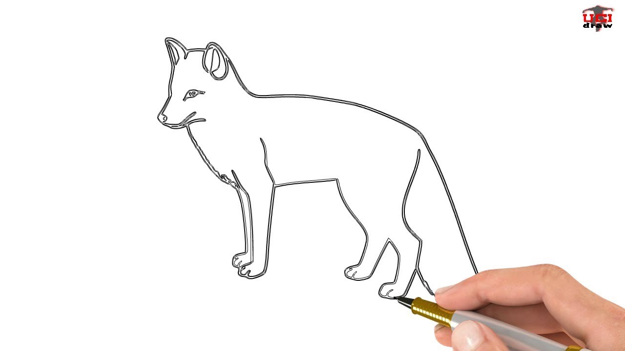 How To Draw A Fox Easy Drawing Step By Step Tutorials For Kids