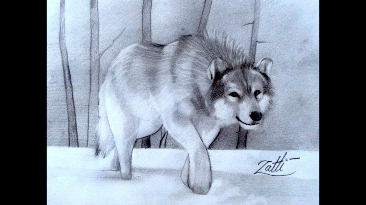 Desenhando Um Lobo Na Neve Youtube