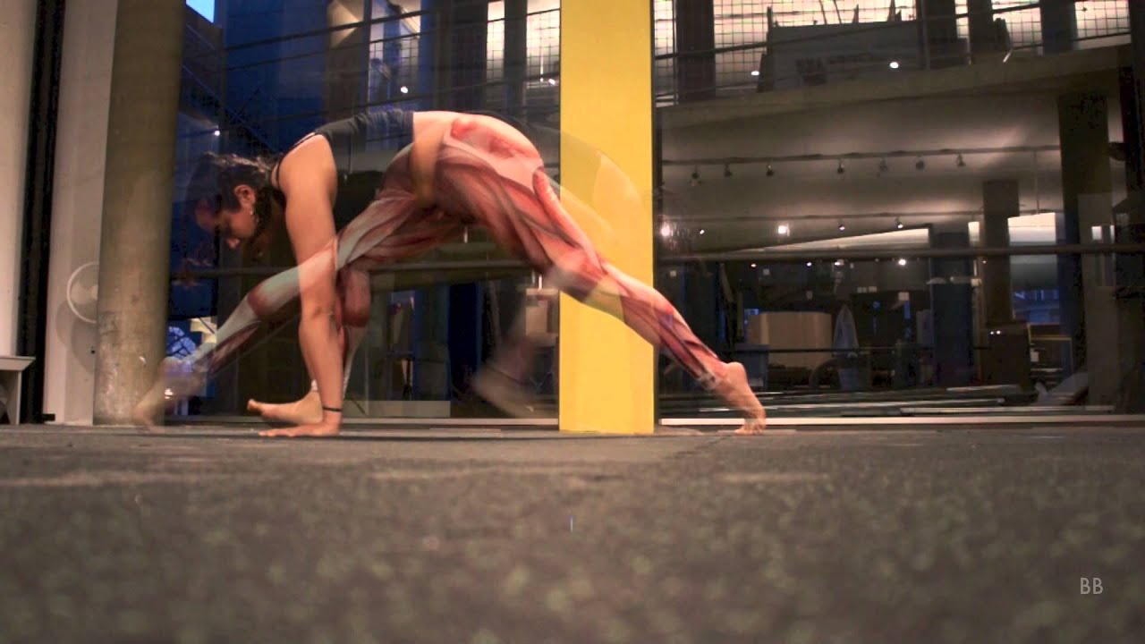 Yoga Anatomy Visualization - Asana Study #1 - YouTube