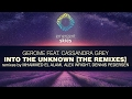 Gerome Feat Cassandra Grey Into The Unknown Alex Wright Remix ESK012 OUT NOW mp3