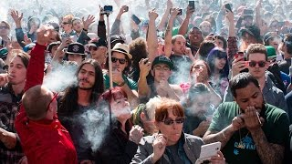 Marijuana WINS, Now Legal in 5 More States