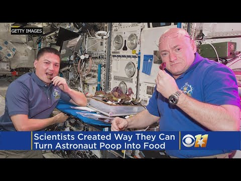 Scientists Looking To Turn Astronaut Poop Into Space Food