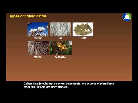 Types of Natural Fibres